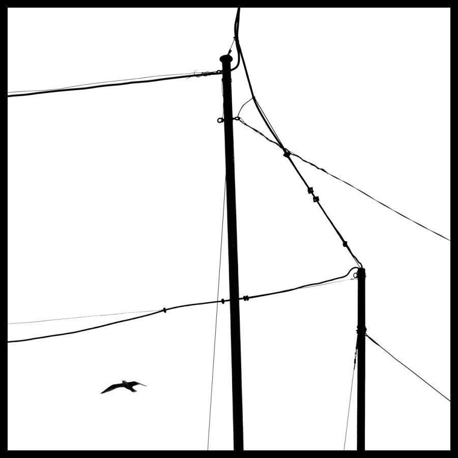 adamderesz_DSC9360_web-square-frame-black